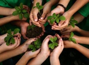 How create self-sufficiency